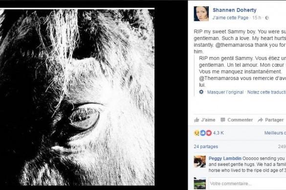 Shannen Doherty en deuil : une nouvelle épreuve pour l'actrice