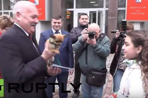 Une jeune fille reçoit un chihuahua de la part deVladimir Poutine