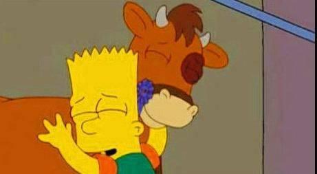 Benjy, le taureau gay sauvé de la boucherie
